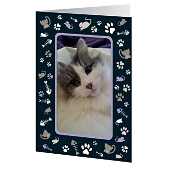 Cat And Mouse Photo Frame Card