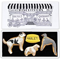 Ice Lollies Biscuit Box Biscuiteers