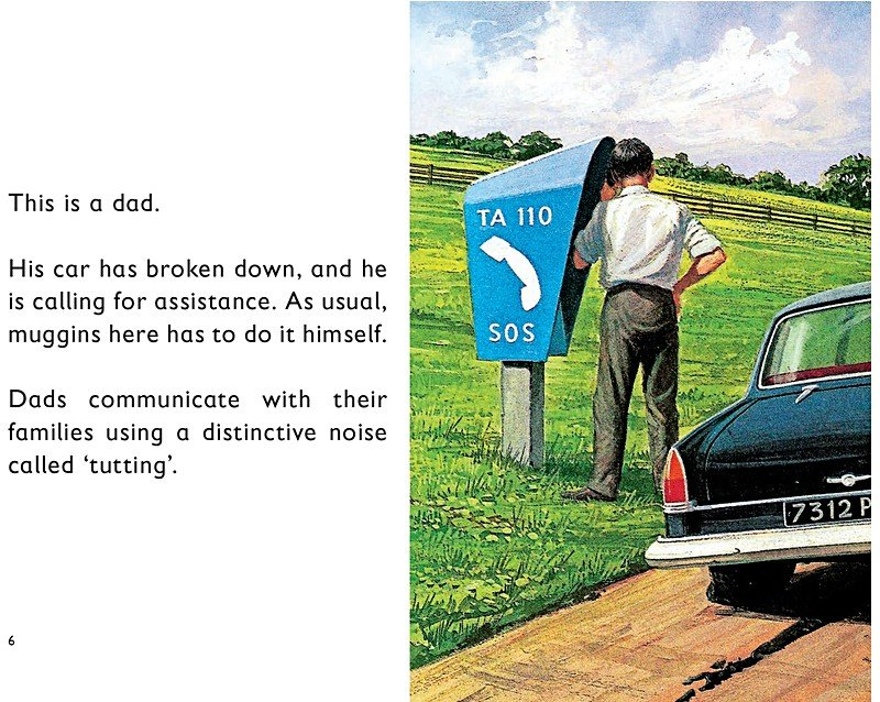 How It Works The Dad Ladybird Books For Grown Ups 58406